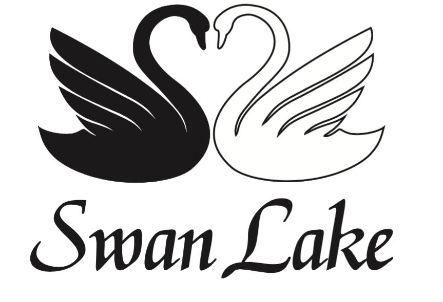 Alkoholfüggőség, depresszió, pánik kezelése- Swanlake